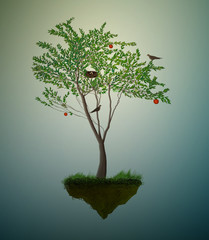 piece of summer, red apple fruit tree with birds and nest growing on the flying rock,