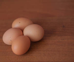Close up of fresh chicken egg on wooden table with copy space