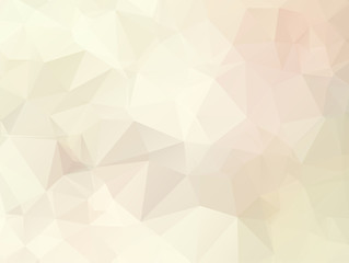 Vector Gray brown Polygon Abstract modern Polygonal Geometric Triangle Background.