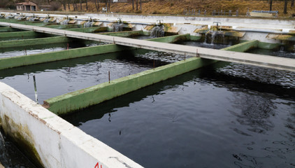 Opened reservoirs of fish farm