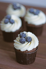 Homemade Sweet Cupcakes