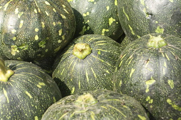 Pumpkin in the local market vegetable shop for sale to customers. Many people involved in vegetable export import. Pumpkin are cultivated around the world. A pumpkin is a cultivar of a squash plant.