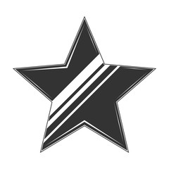 Vintage star icon. Monochrome star. Vector Star for design logo, emblem, label.
