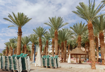 Beautiful public sandy beaches on Red Sea in Eilat with stro umbrellas, luxury vacation spa resorts in Israel