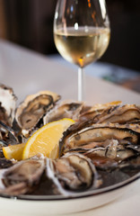 Fresh Oysters with Lemon Slice on a Platter of Ice with a Glass of white Wine