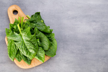 Fresh spinach with green pasta on a gray background.