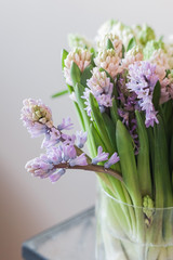 Glass vase with hyacinth flowers of white, pink, lilac and purple color on a table, vertical