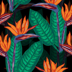 Foto op Plexiglas Paradijsvogel beautiful tropical seamless pattern
