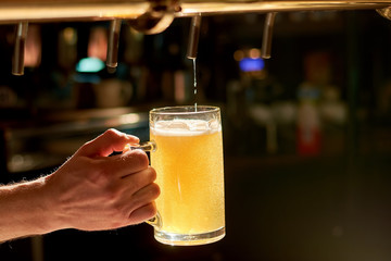 Bartender pouring fresh beer in pub. Beer pouring from a tap. Barman hand at beer tap pouring lager beer.
