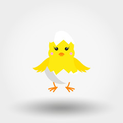 Chick in Eggshell. Icon. Vector. Flat.