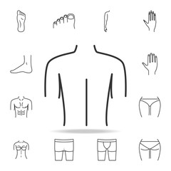 female back shoulder icon. Detailed set of human body part icons. Premium quality graphic design. One of the collection icons for websites, web design, mobile app