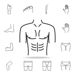 male breasts icon. Detailed set of human body part icons. Premium quality graphic design. One of the collection icons for websites, web design, mobile app