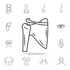 Shoulder joint isolated icon. Detailed set of human body part icons. Premium quality graphic design. One of the collection icons for websites, web design, mobile app