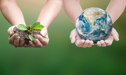 Earth day concept: Two human hand holding earth globe and small tree. Elements of this image furnished by NASA