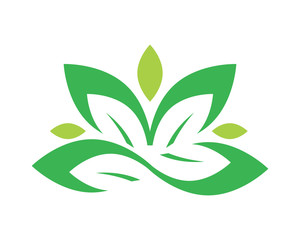 green ornamental leaves image vector icon