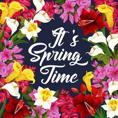 Springtime poster with spring season flower frame