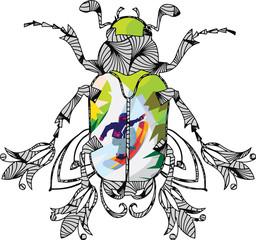 Beetleboarding