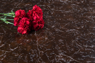 red carnation flowers lie on the marble of the monument, close-up
