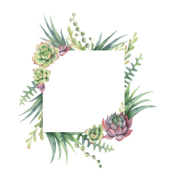 Watercolor frame of cacti and succulent plants isolated on white background.
