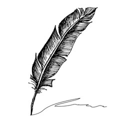 Feather with ink.
