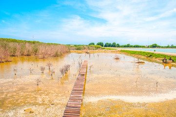 beautiful dry lake side view with blue sky and cloud at Phetchaburi, Thailand