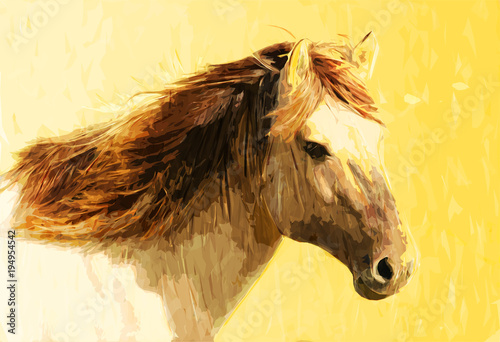 artistic horse art, beautiful horse painting, horse painting for ...
