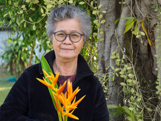 Elderly asian woman smilling with glasses and holding flower yellow in the garden.