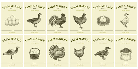 Labels with farm birds and eggs. Set templates price tags for shops and markets of organic food. Vector retro illustration art. Hand drawn nature objects.