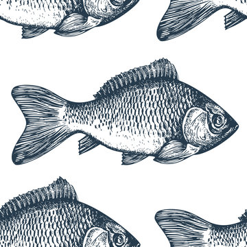 Hand drawn sketch seafood background. Vector seamless pattern with fish. Vintage carp illustration. Can be use for menu or packaging design. Engraved style.