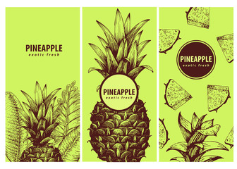 Set of three exotic labels with pineapple. Great for organic food, medicine, perfume design, cooking or gardening. Retro hand drawn illustrations.