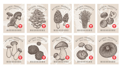 Labels with mushrooms set.