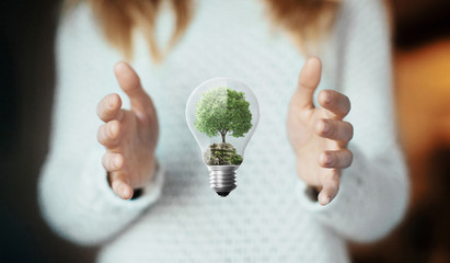 Albero in lampadina, concetto di ecologia