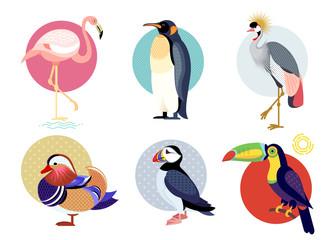 Flat icons of birds set.