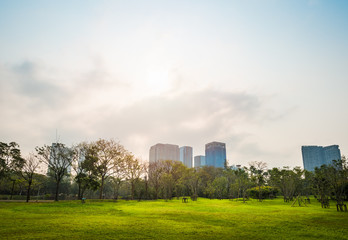 Green grass field with building in Public Park