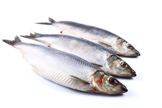Three Herring fish on a white background  (isolated). Close up