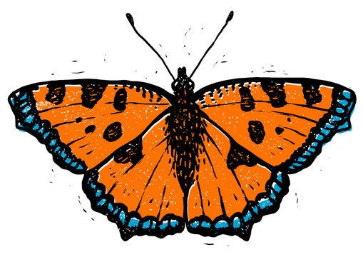 Tortoiseshell butterfly linocut illustration, draw, ink, vector