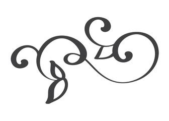 hand drawn flourish Calligraphy elements. Vector illustration