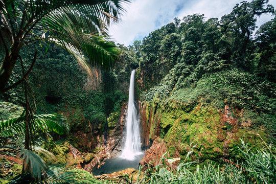 Catarata del Toro into the Rainforest, Costa Rica, Central America