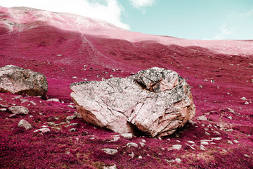 A big rock on the swiss alps in color infrared