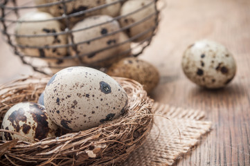 closeup of quail eggs in nest on wooden table with metallic basket background