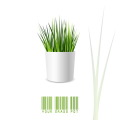 Green grass pot in minimal style and colors isolated on white background. Vector illustration of a small office or indoor plant with white pot and shadow.
