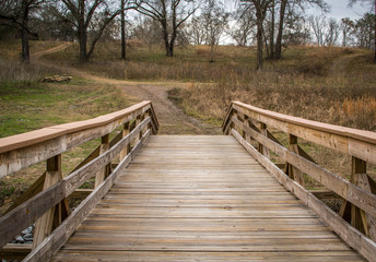 Wooden bridge in woods