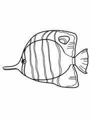 cartoon tropical fish illustration