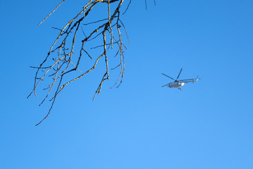 Branch of a tree without leaves against the sky and a helicopter in the background