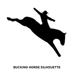 bucking horse silhouette on white background