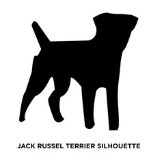jack russell terrier silhouette on white background