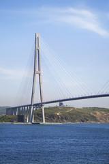In de dag Brug Russian bridge in Vladivostok. Russia