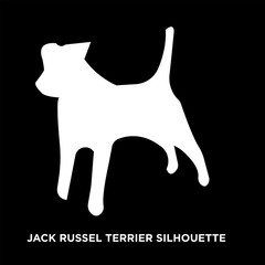 white jack russell terrier silhouette on black background