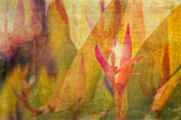 Textured, Layered, Complex, Floral Background from a Garden in Mexico. Digital Watercolor.