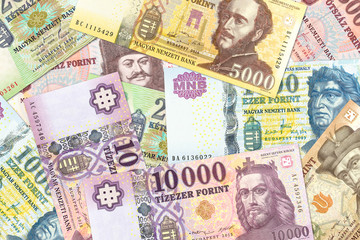 a lot of hungarian forint bank notes